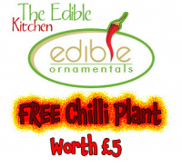 Free chilli plant worth £5...