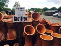 Selected 'Yorkshire' Pots Buy 1 get 1 Free at Farmyard Nurseries