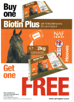 BOGOF Biotin Plus