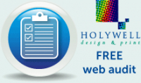 FREE web audit!