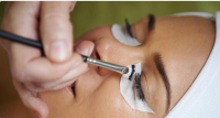 Brow & Lash Tint at Mode