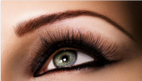Eyebrow Shape at Mode