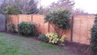 10% Off Panel Fencing!