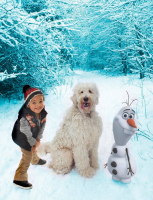 Frozen Photo shoot just £25