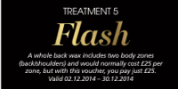 The 12 Treatments of Christmas - Treatment 5 - Flash
