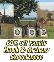 60% Off Hawk & Archery Experience just outside St Neots