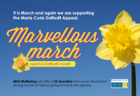 50% Off - The Marvellous March Daffodil Massage