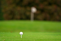 Are you looking for a cheap golfing lesson in Brentwood?