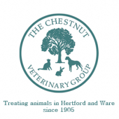Pet weight loss at Chestnut Vets!