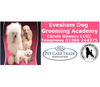 Grooming Success for Evesham Dog Grooming Academy