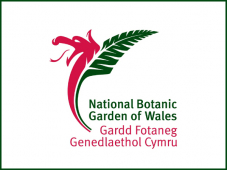 Chelsea challenge for National Botanic Garden of Wales