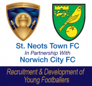 St Neots Town Football Club partnership with Norwich City Football Club