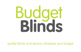 Budget Blinds, Bolton have new fly screen that will get rid of flies for good.