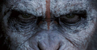 Dawn of the Planet of the Apes a must see in Shrewsbury