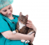 The importance of spaying/neutering your pet