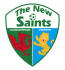 The New Saints of Oswestry Make History