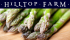 Asparagus Night at Hilltop Farm Cafe