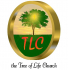 The Tree of Life Church Sunday Service