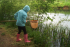 Pond Dipping & Bug Hunt