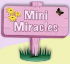 Mini Miracles Cleaning Services
