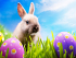 Easter Events in Cardiff