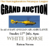 CHARITY AUCTION FOR EAST ANGLIAN AIR AMBULANCE