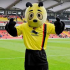Make Your Own Watford FC Mascot Workshop