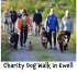 Charity Dog Walk in Ewell – want to be part of it ?  #dogwalk @ewellvillage @ramsecurityfire #romaniandogrescue