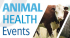 Animal Health Event- Llangadog