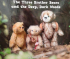 Three Brothers Bears  book launch