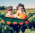 PYO Pumpkins and Maize Maze (Oct W/Es and half term)