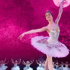 Russian State Ballet of Siberia Presents Swan Lake