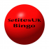 Bingo Fundraiser for Little Wonders
