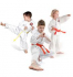 Martial Arts for Little Ones