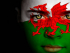 St. David's day celebrations / Dydd Dewi Sant