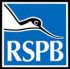 RSPB - Illustrated Talk