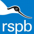 RSPB - Birds, Binoculars and Biscuits