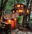 Tree House Living – Home Improvement Ideas From North Devon's VK Interiors