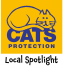 Local Community Spotlight - Cats Protection #Epsom @CatsProtection
