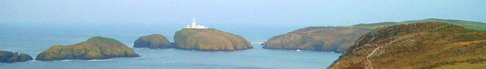 Local Businesses in Pembrokeshire