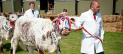 Shropshire County Agricultural Show 2015