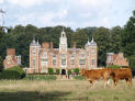 Summer Nights Outdoor Film Festival at Blickling Estate