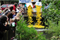 Wimborne in Bloom's Duck Race