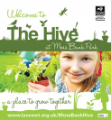 Beach inspired arts & crafts at the Hive