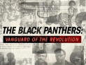 The Black Panthers: Vanguard of the Revolution (Film Showing)