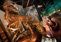 Wales' Newest Dinosaur at Cardiff National Museum