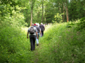 Ironbridge Gorge Walking Festival