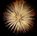 Friends of Selsdon primary Fireworks Display