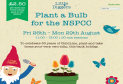 Plant a Bulb for the NSPCC