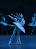 Swan Lake Recorded at the Bolshoi Theatre, Moscow